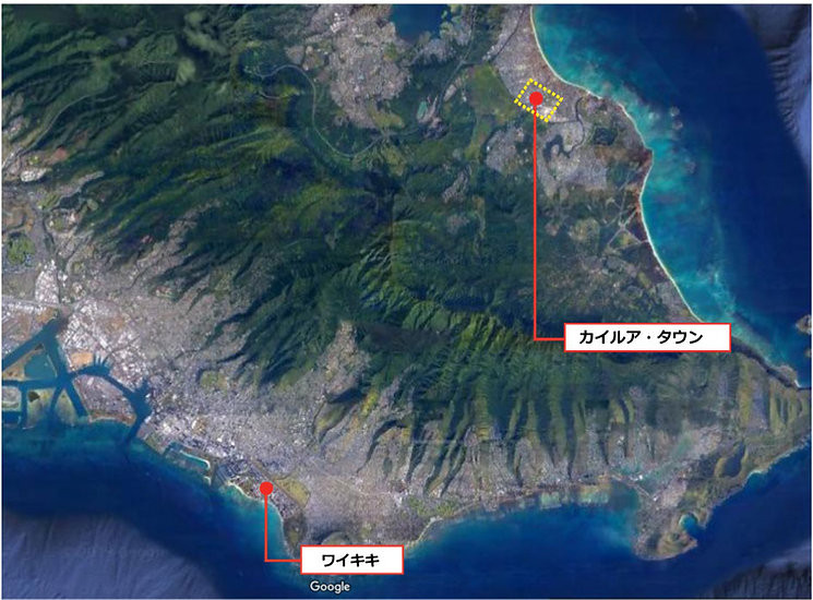 MAP_SHOPPING_KAIRUA.Jpg