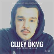 CLUEY DKMG
