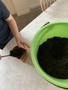 Odling på myrstacken