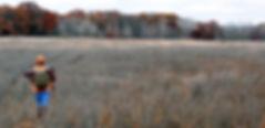 WMA Deer.jpg