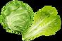 salads_batavia.png