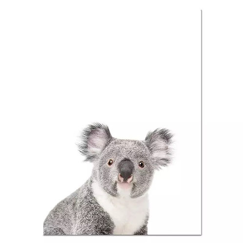 Koala Peekaboo Wall Print