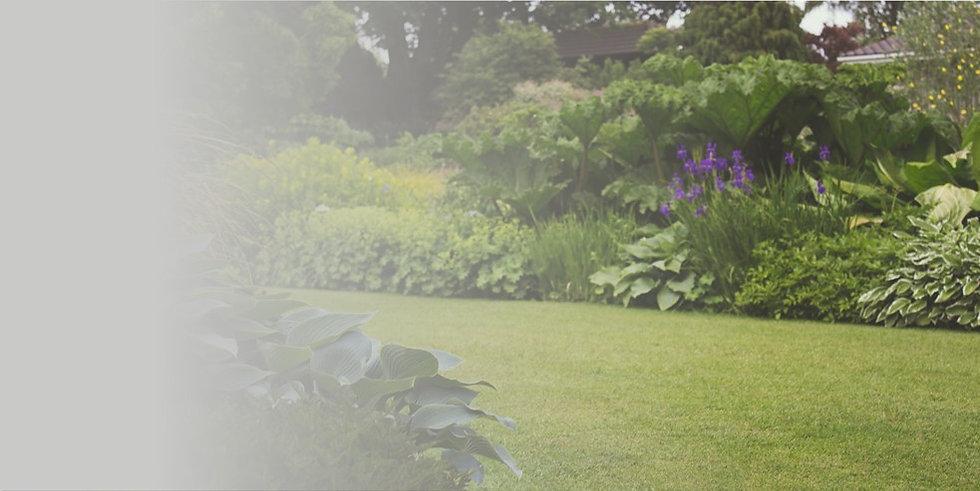 Provals - Garden maintenance.jpg