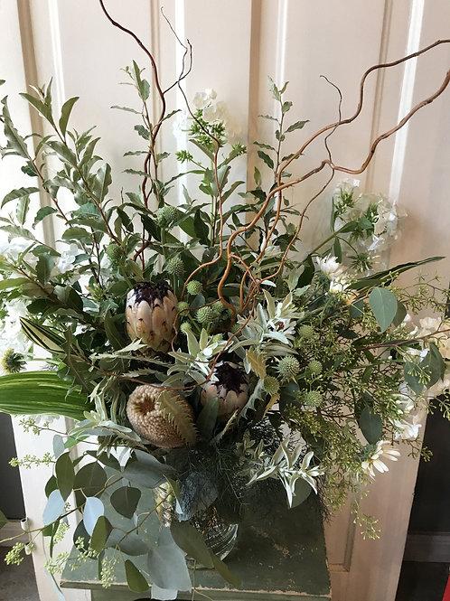 Willow + Protea