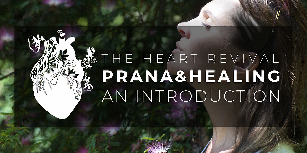Introduction to Prana & Healing with Jerry Becker