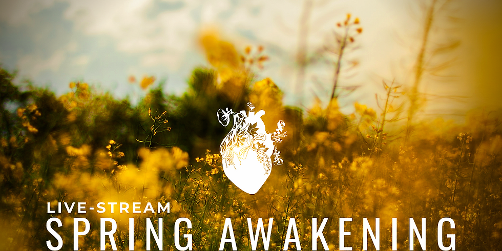 Spring Awakening: A Retreat for the Nervous System