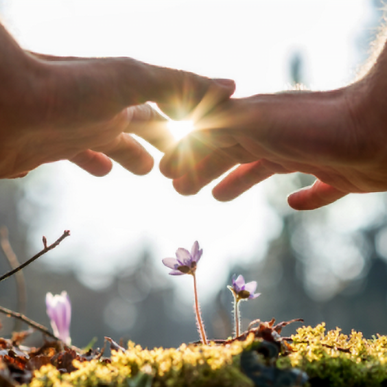 Energy Healing Yoga Nidra