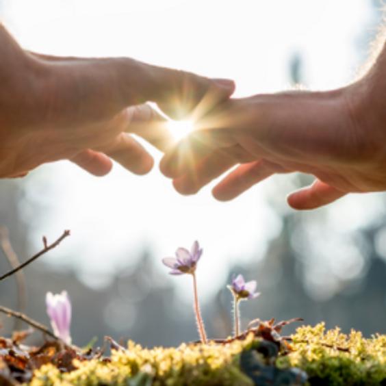 Energy Healing Yoga Nidra   Sold Out!