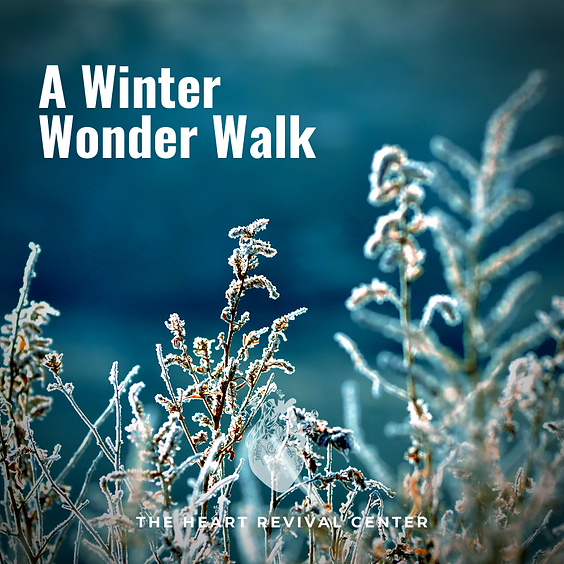 A Winter Wonder Walk near Heart