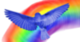 bluebird_rainbow.png