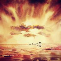 Dyr i solnedgang