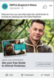 RSPCA_Social_posts_0003_Layer Comp 4.jpg