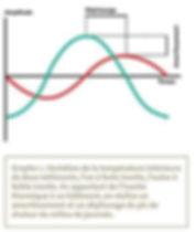 Graphe1.jpg