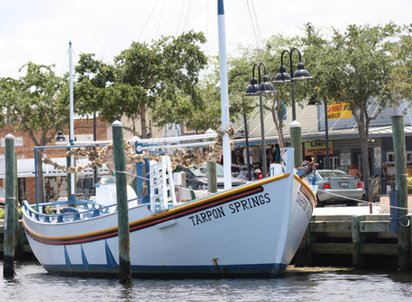 Opa! An Introduction To Tarpon Springs, Florida