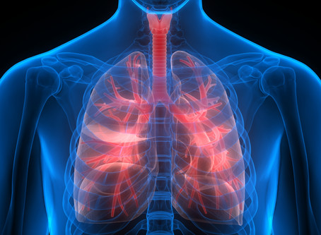 How to Get Better Respiratory Support... Essential Oil Benefits