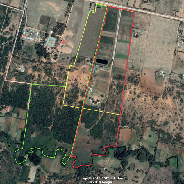 Plan View of the Property