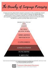 LP Hierarchy.jpg