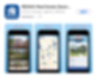 Apple REMAX App.jpg