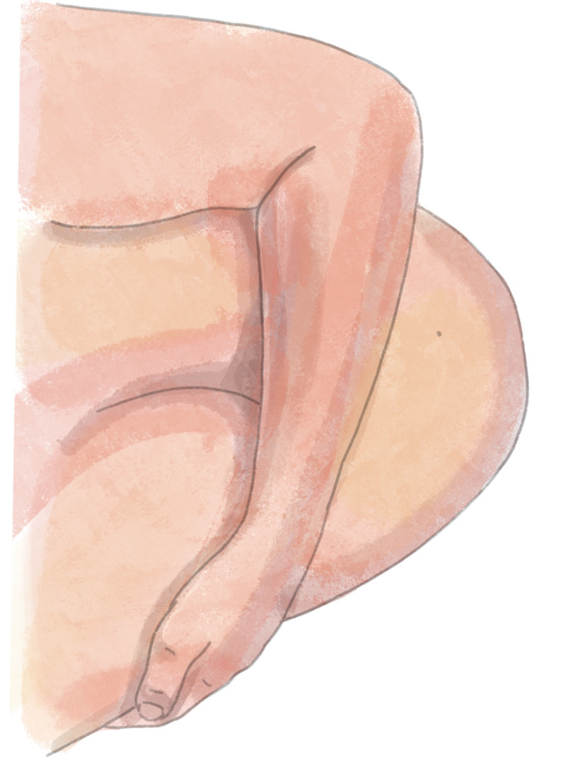 PREGNANT ILLUSTRATION