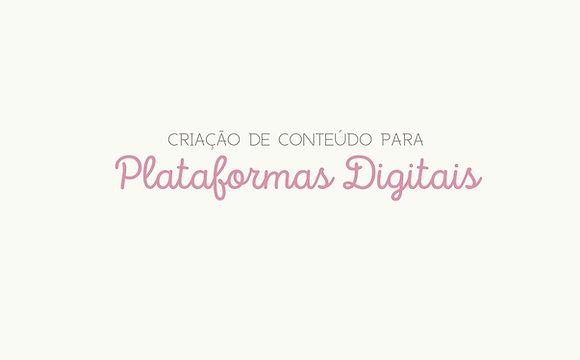 Planner Criador de Conteúdo [download pdf]
