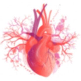 POTS dysautonomia rapid heart rate