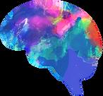 FUNCTIONAL NEUROLOGY DIAGNOSTICS
