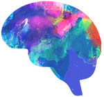 FUNCTIOANL NEUROLOGY DIAGNOSTICS