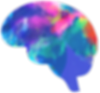 better_brain_color_just_brain_large_edit