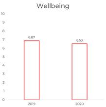 Mental Wellbeing 2019-2020