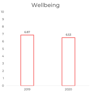 Mental Wellbeing in 2019 and 2020