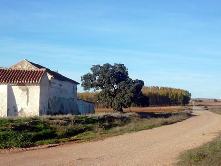 Con Delibes por Castilla