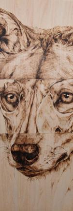 SkullsandSouls Timber Wolf.jpg