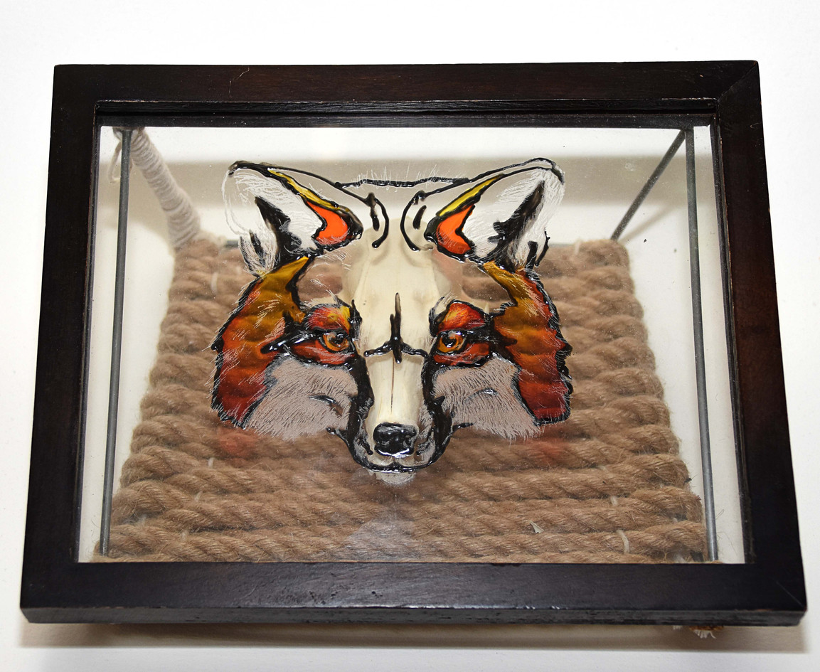 Gray Fox Skull Shadow Frame