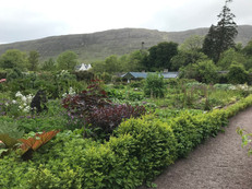 Applecross Walled Garden Café