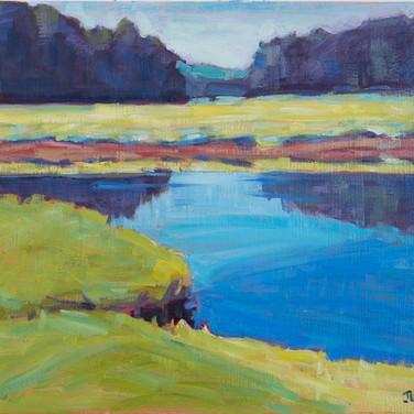 Marsh Color