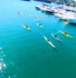 Sydney Harbour Kayaks Social Paddle