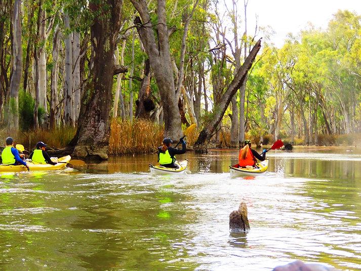 Paddle Safe Paddle Smart