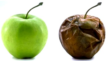 Green apple and brown rotten apple