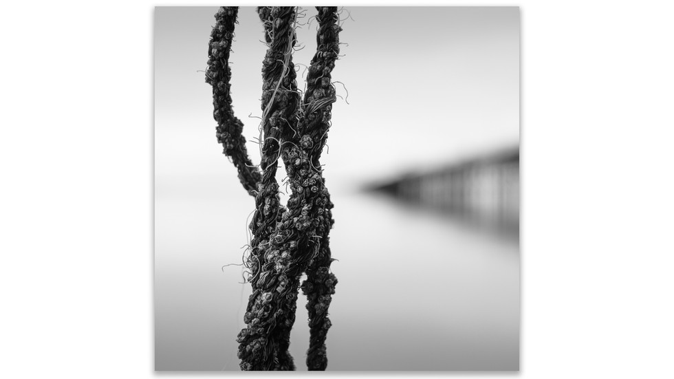 rope and chain-2.jpg