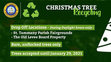 Plan Now: Christmas Tree Recycling