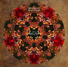 VP013 Kin Izagurie_Amber Suns (Darkersound Remix).jpg