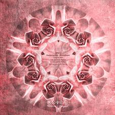 VP011 Darkersound_Soundtrack EP.jpg