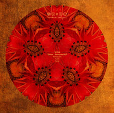 VP012 Daniel (UK)_Rambutan EP.jpg
