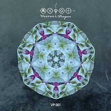 VP001 front cover Hidden Depths - Moojaa