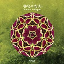 VP005 cover.jpg