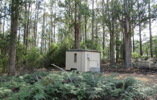 eco traveller in bush serene