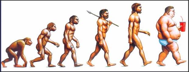 Evolução-Obesidade.png