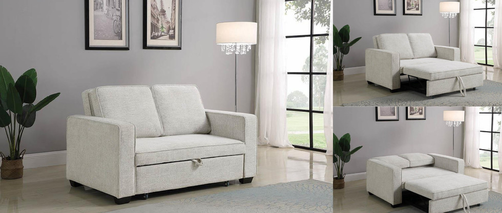 Sofa with Pull-Out Sleeper