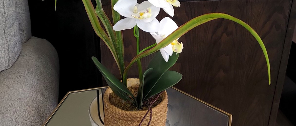 Artificial Orchid in Flower Pot