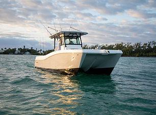 World Cat Boat 325CC